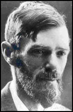 D h lawrence sexual themes edu