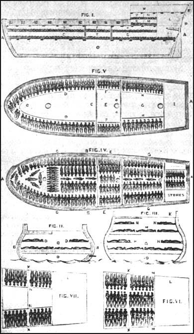 The slave-ship Brookes (1788)