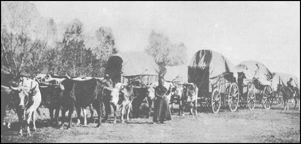 A photograph of an early wagon train.