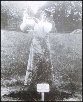 Emily Blathwayt watering the tree planted for Clara Codd.